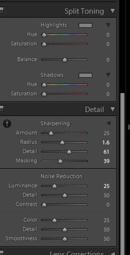 Lightroom6_SplitToning_Detail.JPG