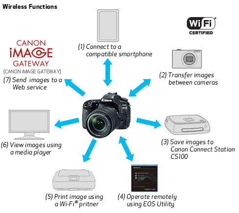 80d_features_05a.jpg