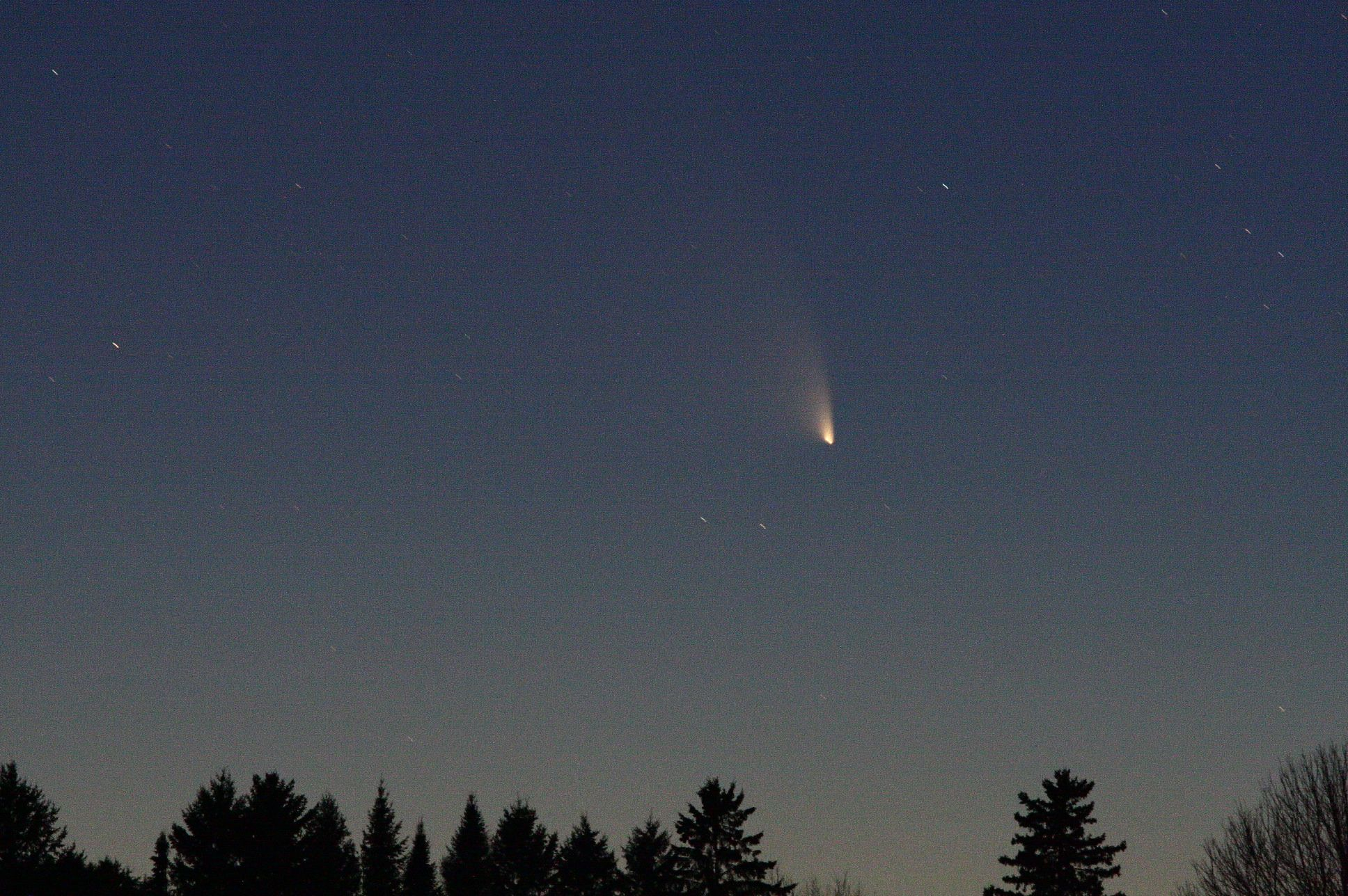 Comet PANSTARSS copy.jpg