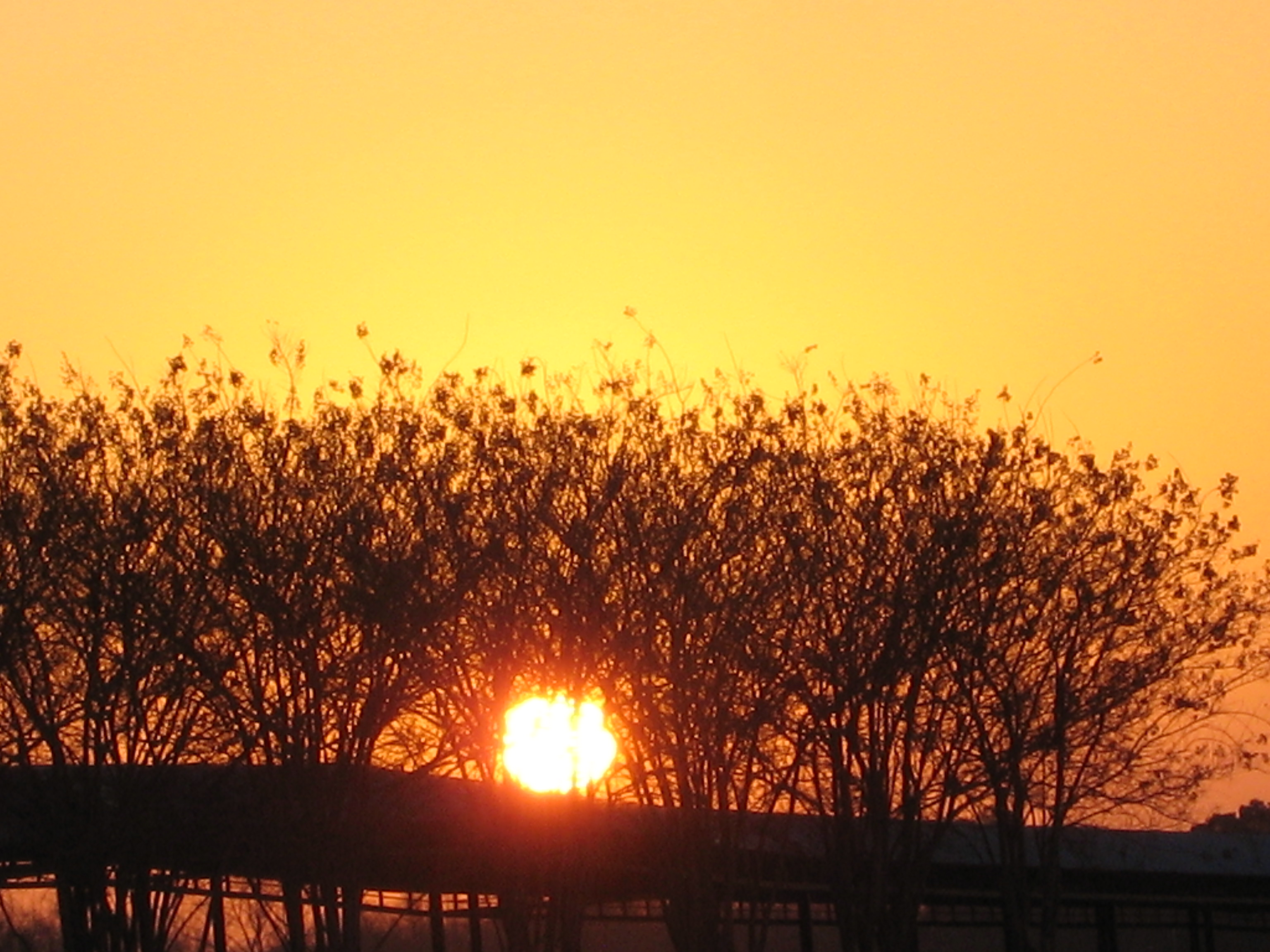 IMG_3309 Sunrise At Little Rock Airport.JPG