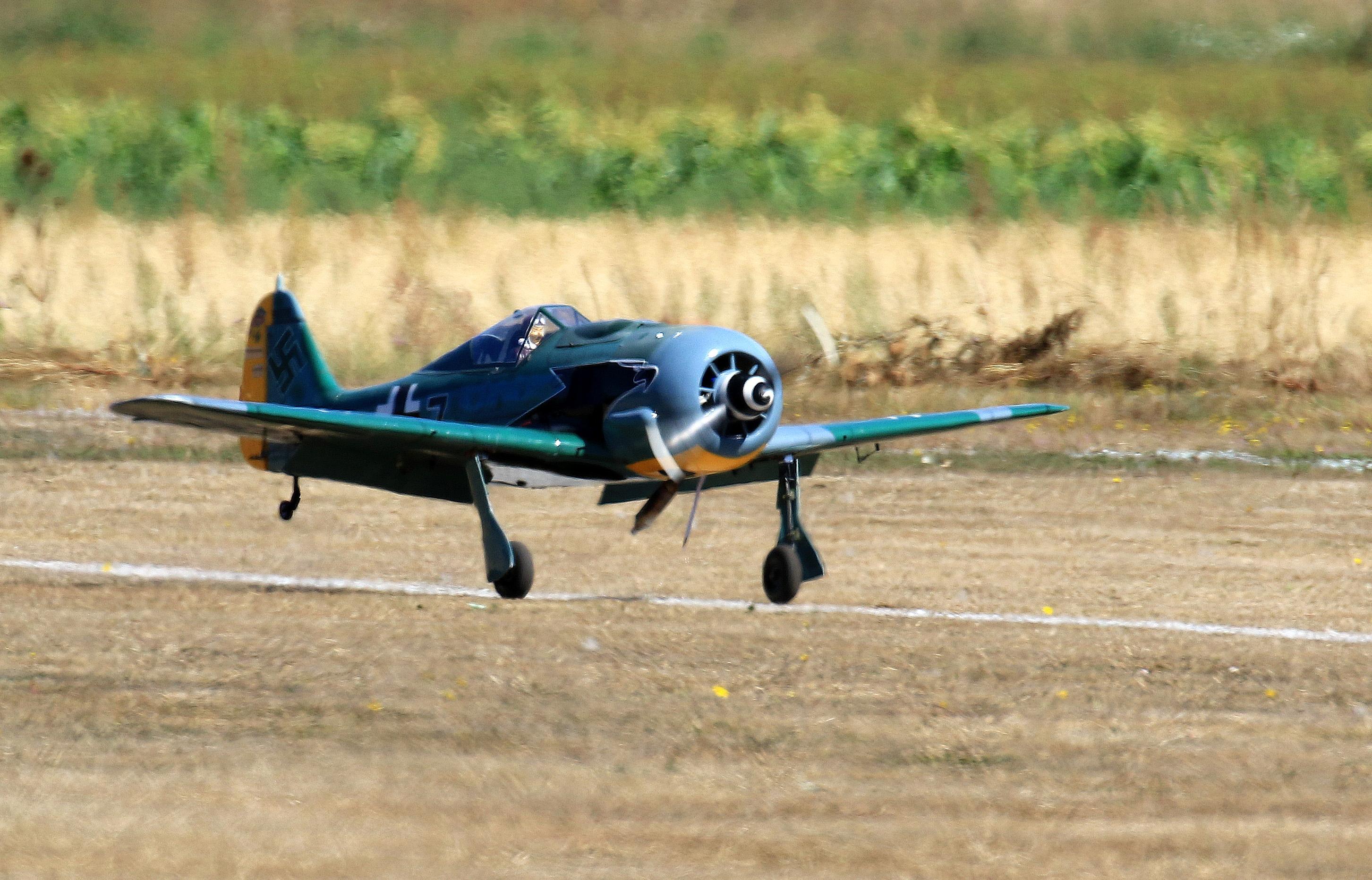 FW-190 01-LR.jpg