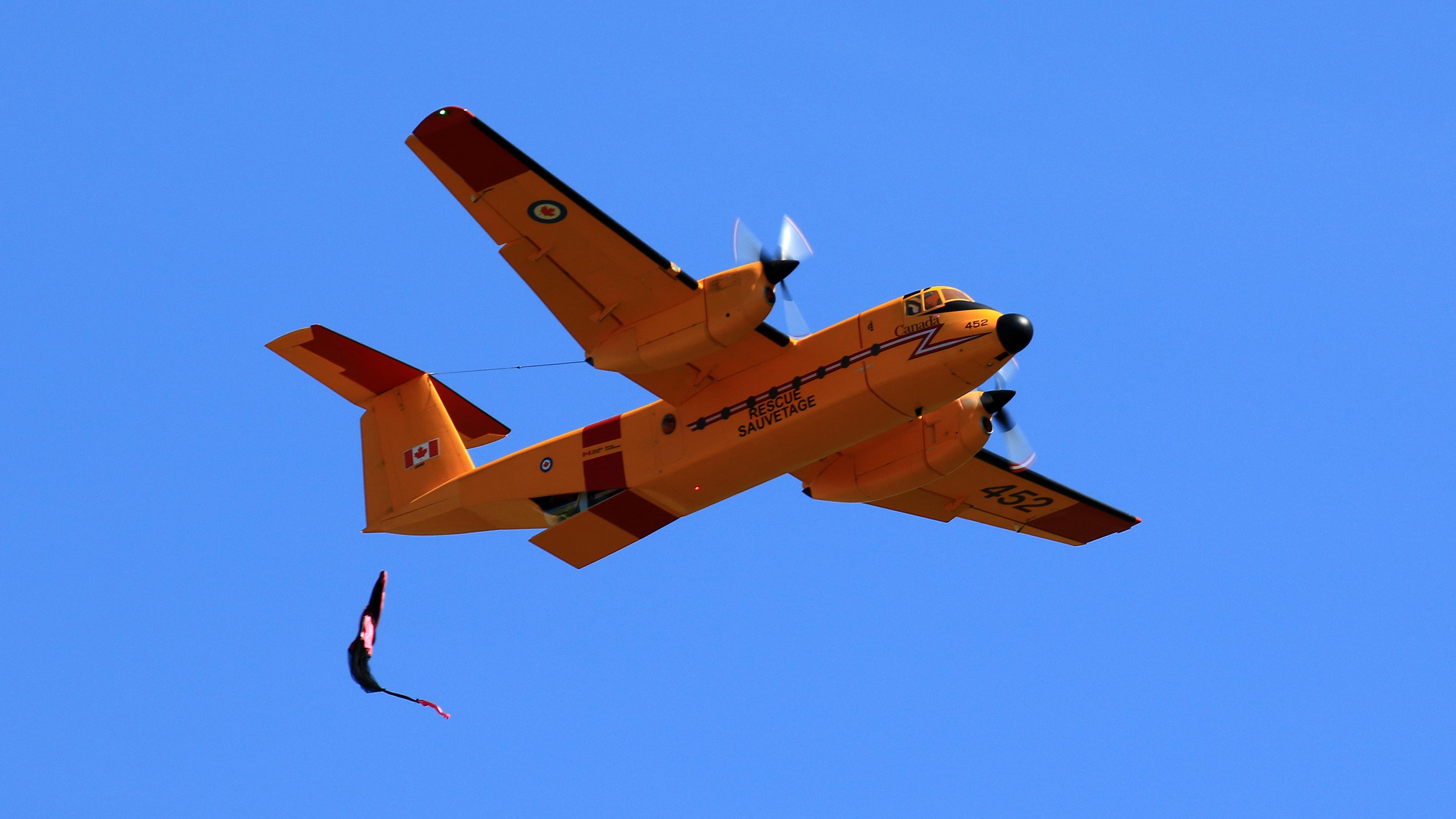 de Havilland Buffalo 03b.jpg