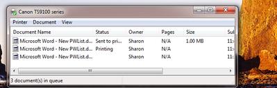 screen print.png