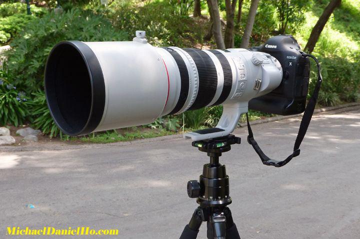 EF 200-400mm f/4L IS USM Extender 1.4x Lens with EOS-1 D X Camera