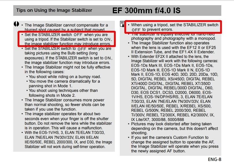 300mm f4 IS.jpg