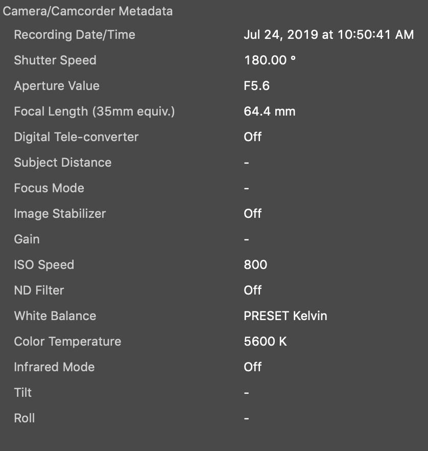Screen Shot 2019-07-24 at 12.59.24 PM.png