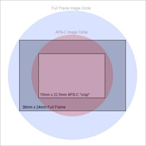 image_circle.jpg