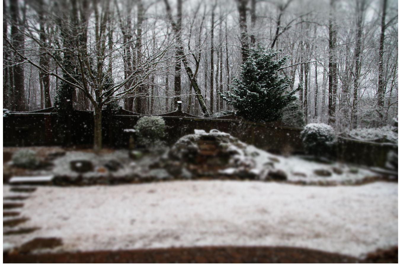 snow pic.JPG