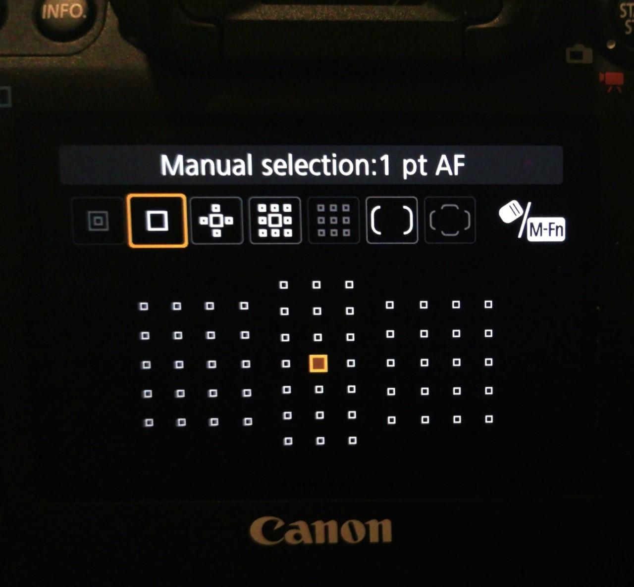 Canon 5d iv AF area selection.jpg
