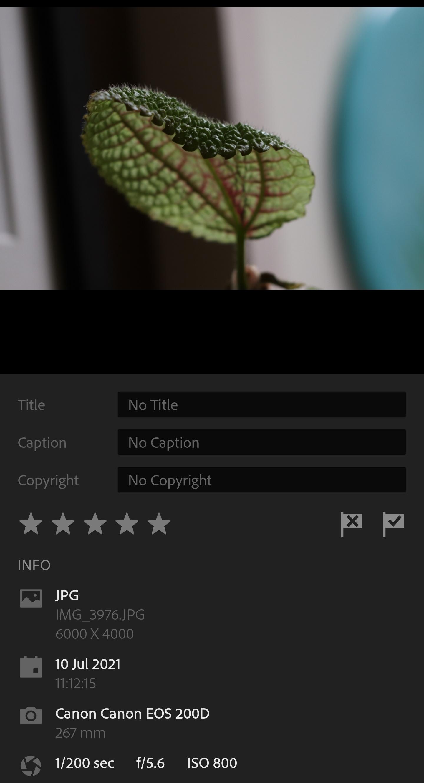 Screenshot_20210710-161041.jpg