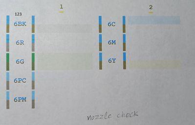 nozzle check_20210808.jpg