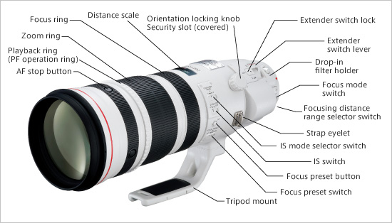 Canon 200-400mm f/4L IS Lens