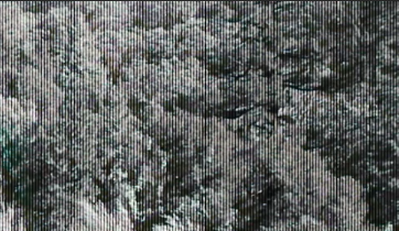 lines on video 1