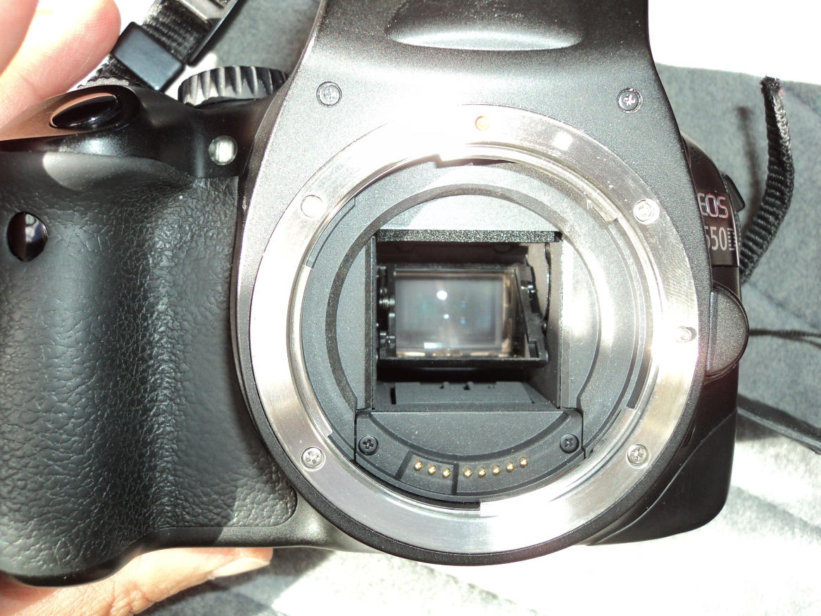 PICTURE LENS REMOVED.JPG