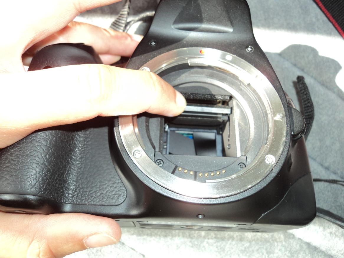 PICTURE BLACK 2.JPG
