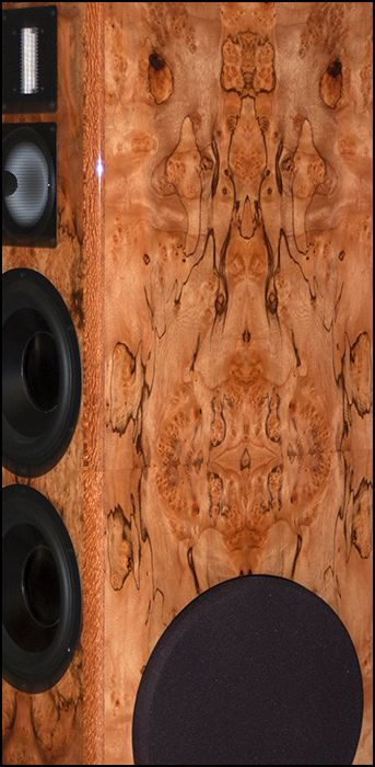 SALK_SoundScape8_Pepperwood_burl2.jpg