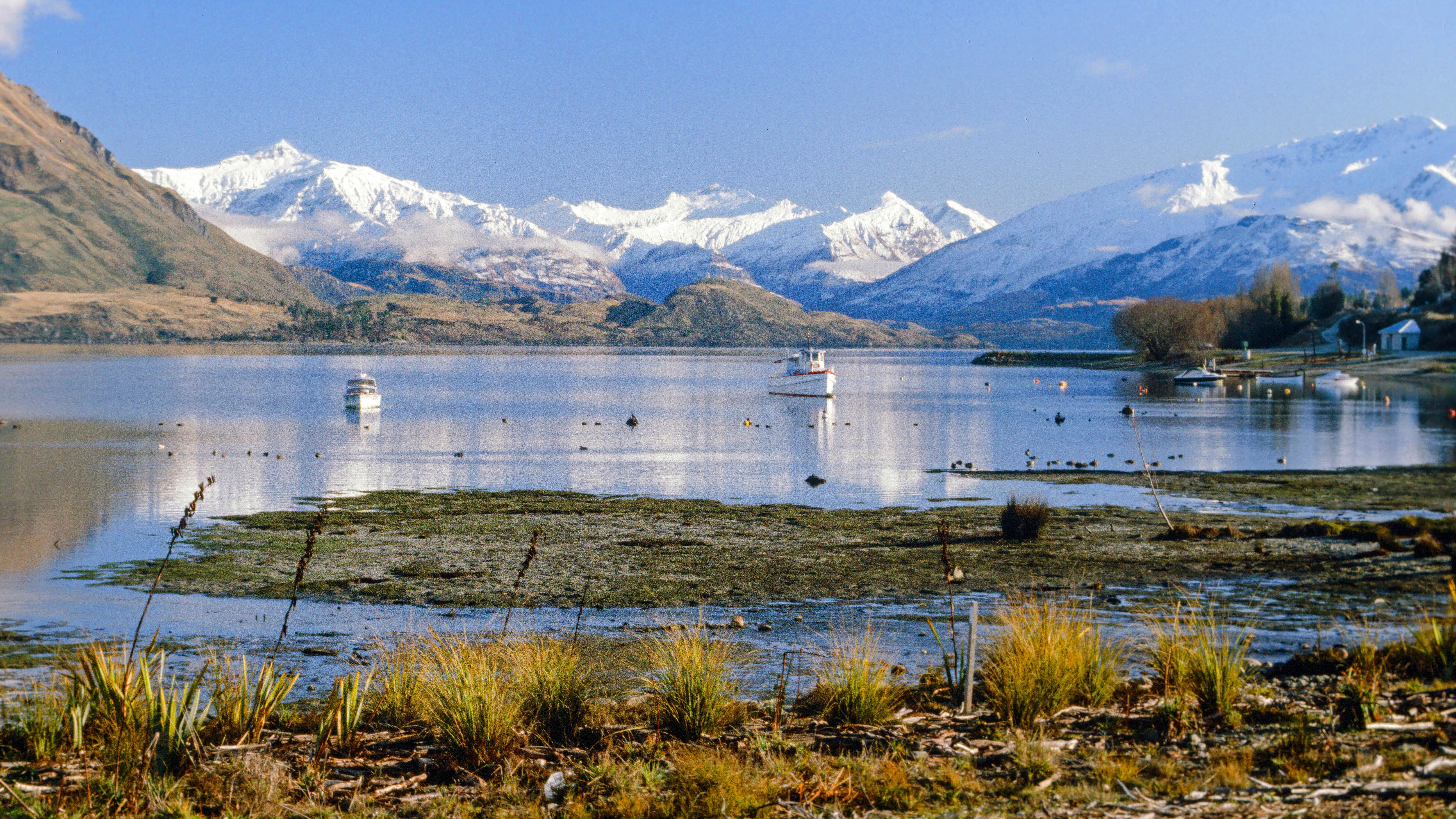 NZ Fiordland Wanaka Lake.jpg