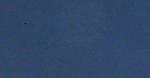 IMG_1894_Detail.png