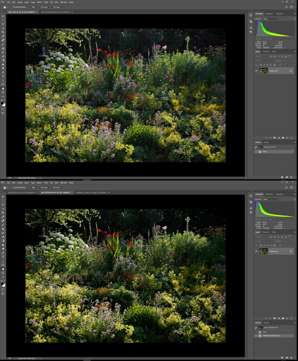 dpp2-vs-dpp4.jpg