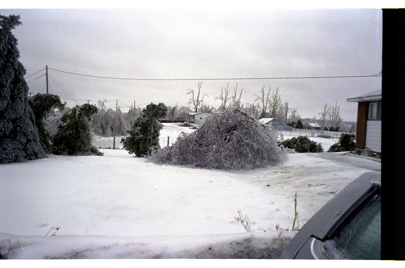icestorm98011.jpg