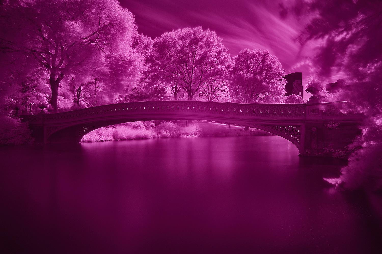 Central_Park_Infrared_10.JPG
