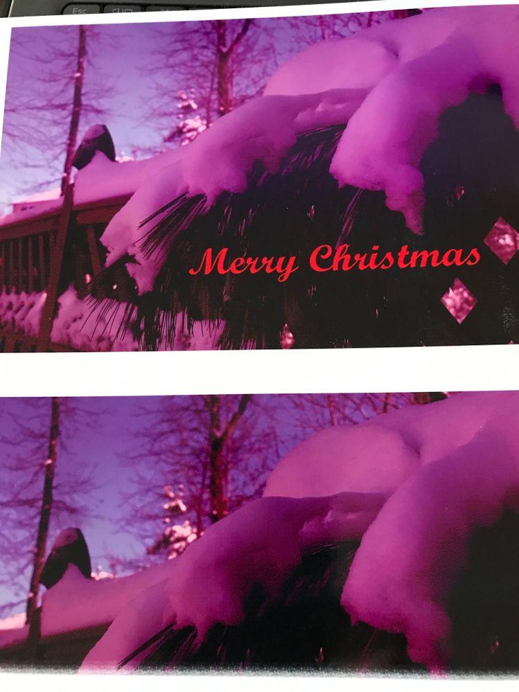 RED CHRISTMAS PHOTO.jpg