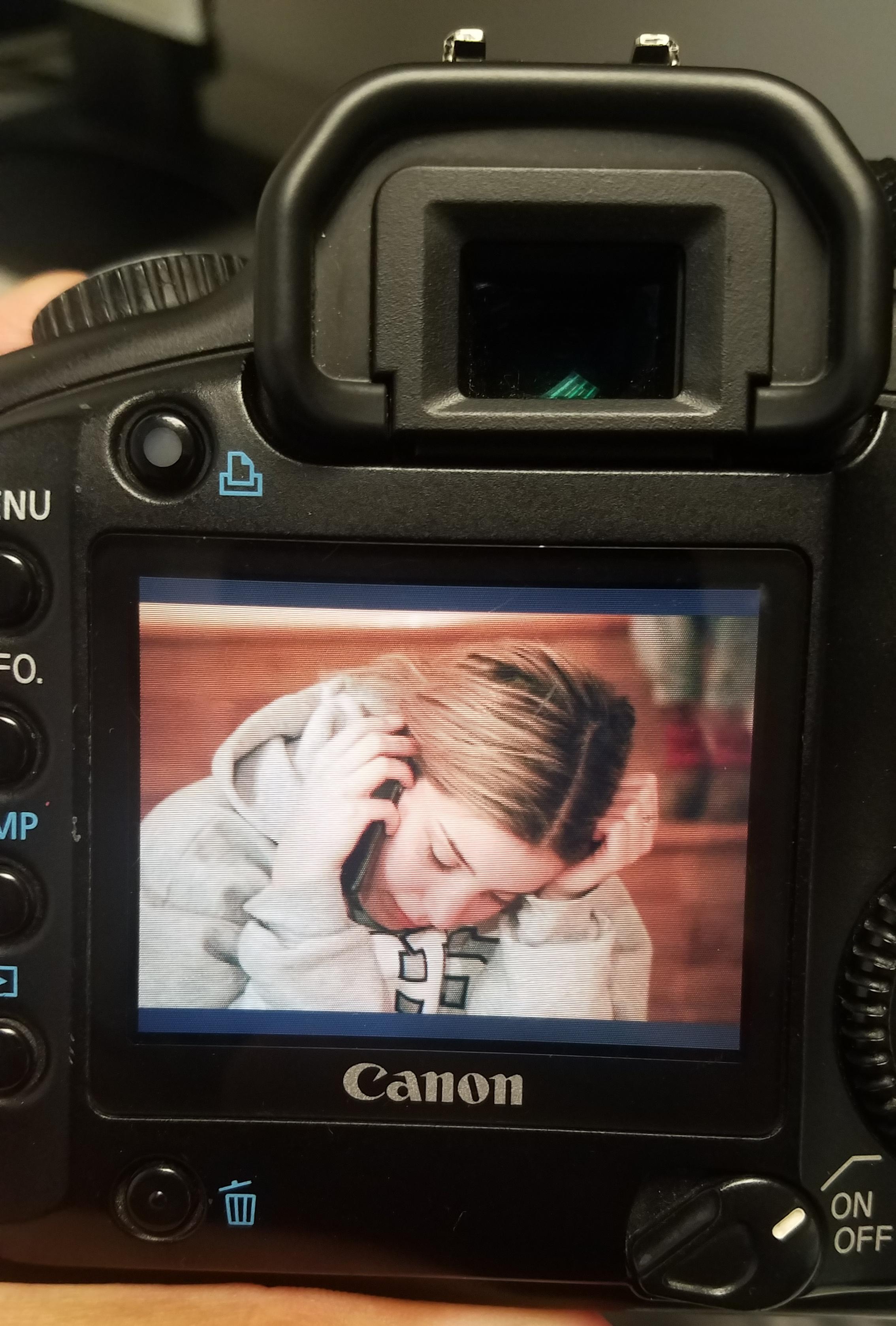 Canon LCD display.jpg