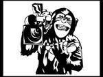 monkeycamera.jpg