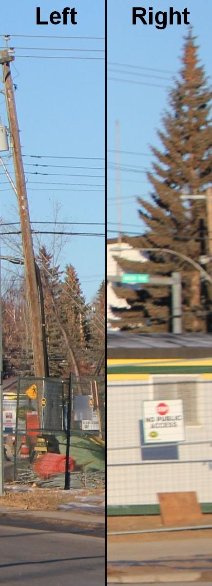 Calgary Transit 8281crop2.jpg