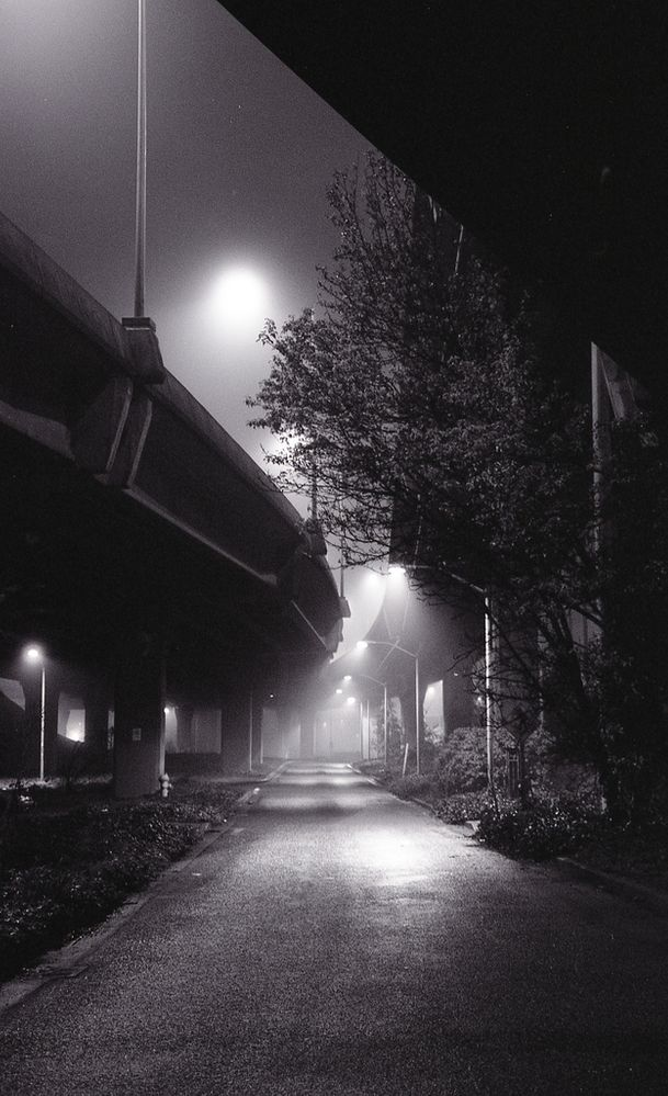 Under the Freeway at Night
