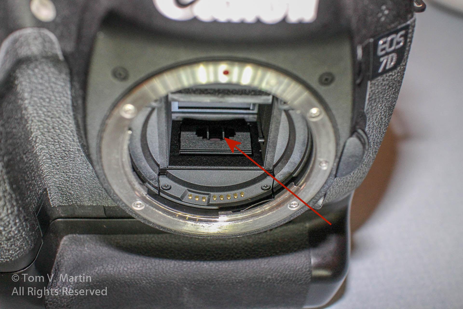 IMG_0981 arrow.jpg